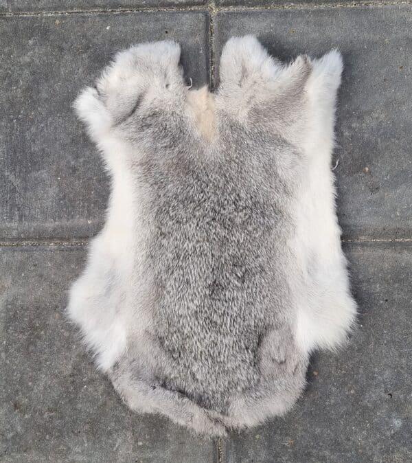 Grå kaninskind